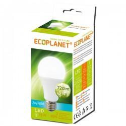 BEC LED 9W A60 6500K 230V ECOPLANET 0005